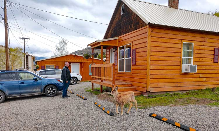 Yellowstone's Treasure Cabin